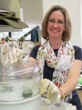 Dr. Sharyn Perry working with homogenized plant material.