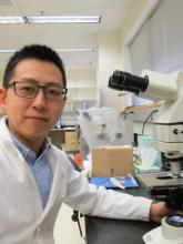 Dr. Kawashima working in his lab.
