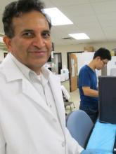 Dr. Reddy Palli in his lab.